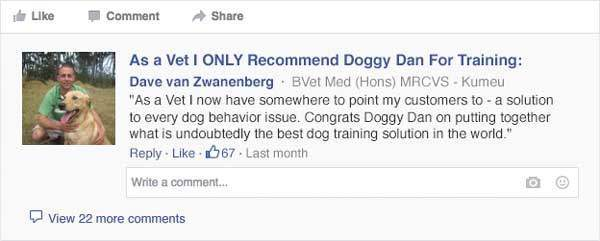 Doggy Dans Online Dog Trainer Results